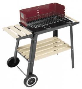 Meilleur barbecue charbon pas cher