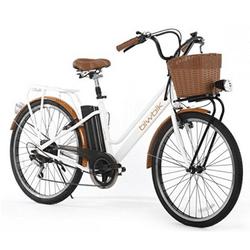 Test et avis vélo électrique biwbik mod gante