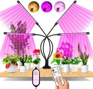 Lampe de plante Eweima